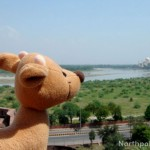 Raymond Around the World: India