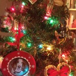 Becky's Christmas Tree