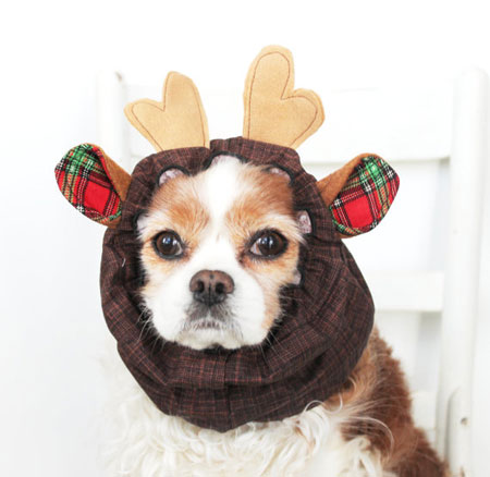 Reindeer Dog Snood