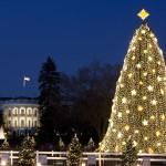 National_Christmas_Tree_Dec_2009