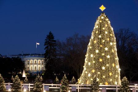 National Christmas Tree Dec. 2009