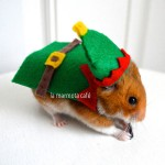 hamster-elf