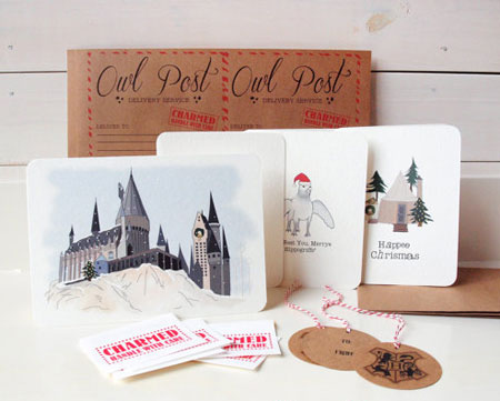 The Unofficial Harry Potter Christmas Kit