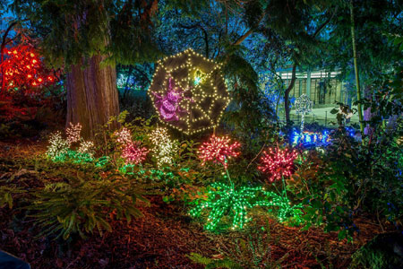 Garden d'Lights | Bellevue Botanical Garden | Bellevue, WA