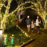 Holidays at the Garden | Daniel Stowe Botanical Garden | Belmont, NC