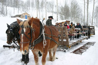 Mill Iron Ranch Sleigh Rides | Jackson Hole, Wyoming