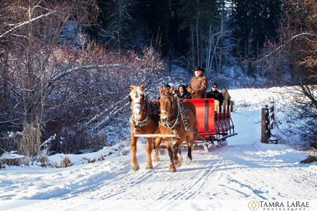 Mountain Springs Lodge Sleigh Rides | Leavenworth, Washington