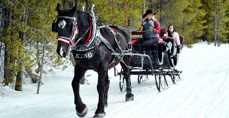 Nordic Sleigh Rides | Breckenridge, Colorado