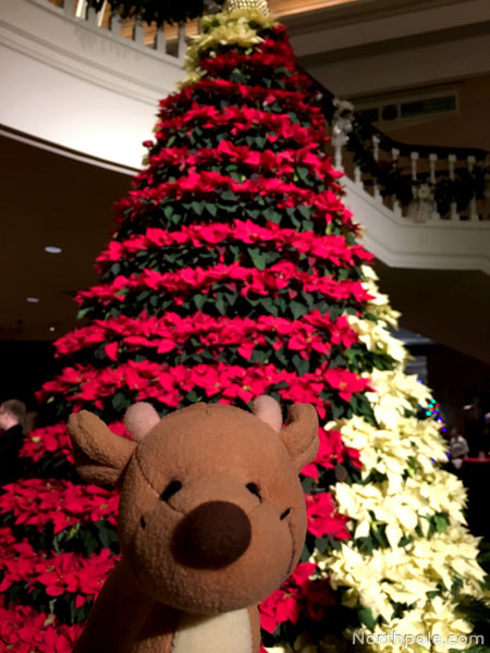 Christmas at Opryland Resort