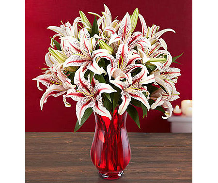 1800Flowers • Candy Cane Lilies